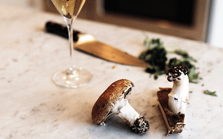 From forest to fork Krug x mushroom