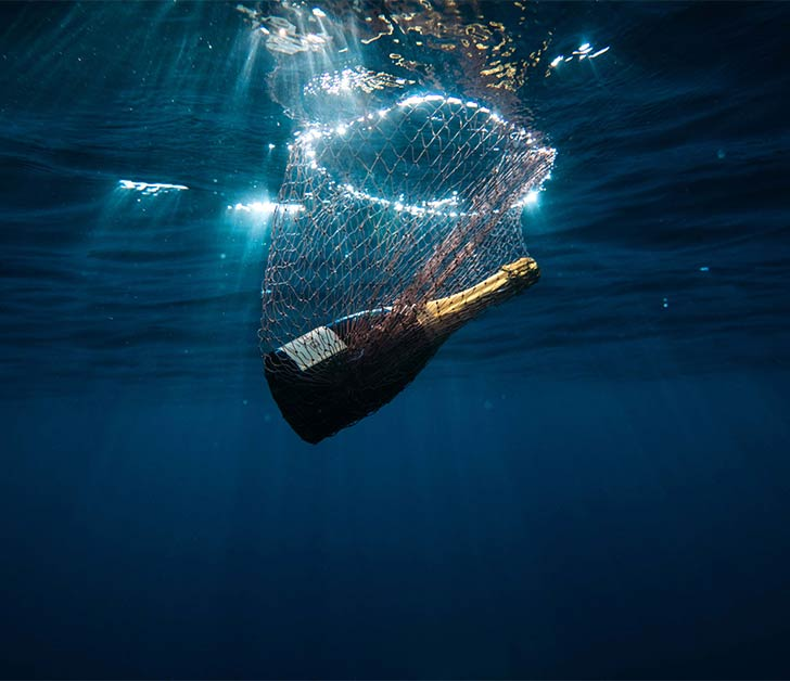 Krug X Fish bottle in the sea