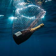 A bottle of Krug in the Sea
