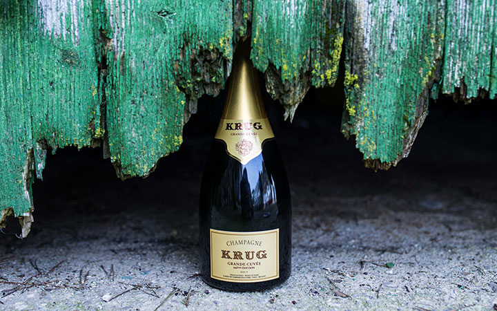 Krug_x_Fish_Individuality_story_header
