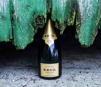 Krug_x_Fish_Individuality_story_push