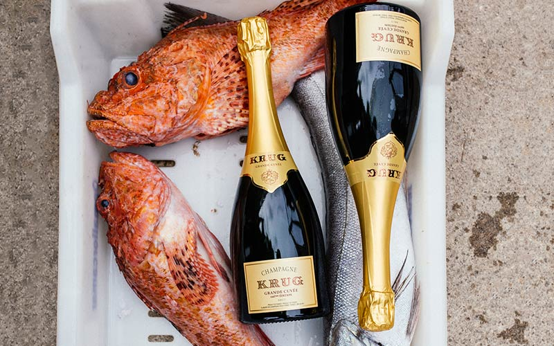 Krug X Fish Single ingredient