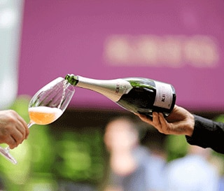 krug world festival
